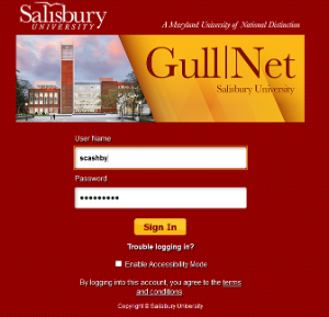 gullnet login page